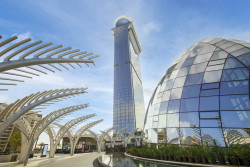 The St. Regis Dubai, The Pam - Palm Tower.jpg